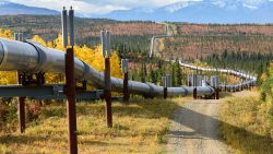The Trans Alaska pipeline in fall.