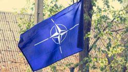 Blue Nato Flag