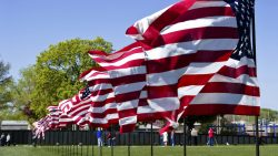 Flags by Vietnam Memorial