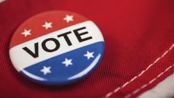 Vote button on flag