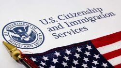 Immigration Services logo